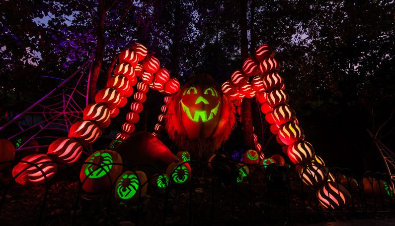 DOLLYWOOD'S GREAT PUMPKIN LUMINIGHTS GROWS IN 2018